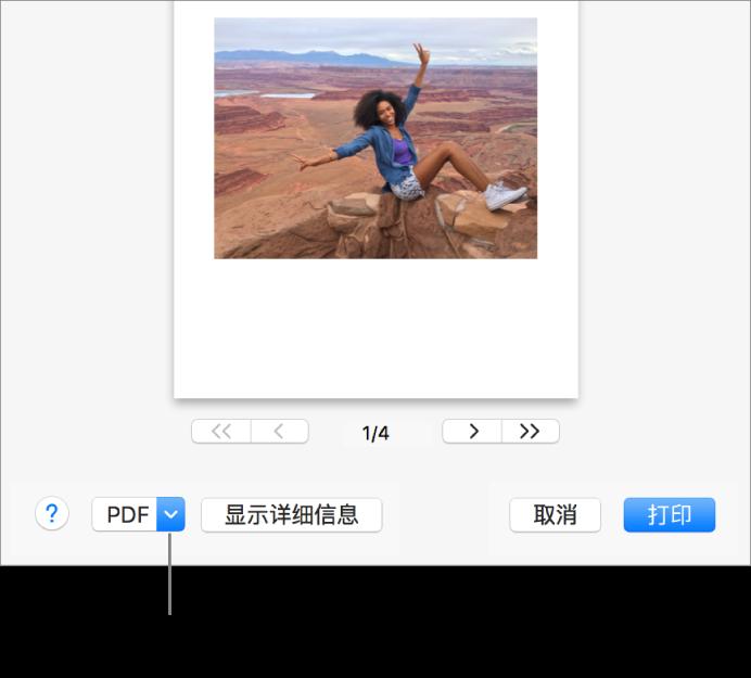 """点按""""PDF""""弹出式菜单,然后选取""""存储为 PDF""""。"""