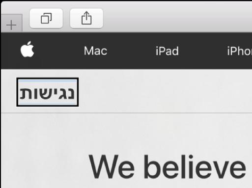 """סמן VoiceOver - קו מתאר מלבני שחור -ממוקד במילה """"נגישות"""" על המסך."""