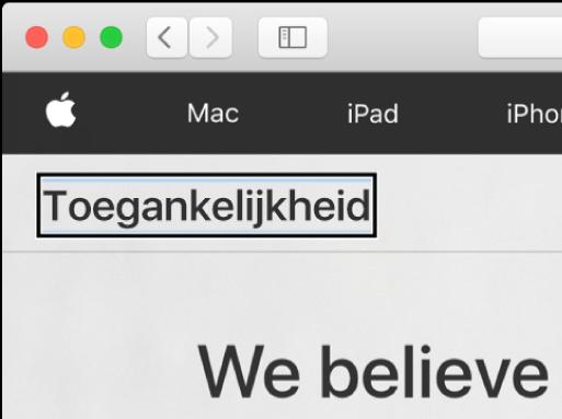 """De VoiceOver-cursor (een donker rechthoekig kader) staat op het woord """"Accessibility"""" in het scherm."""