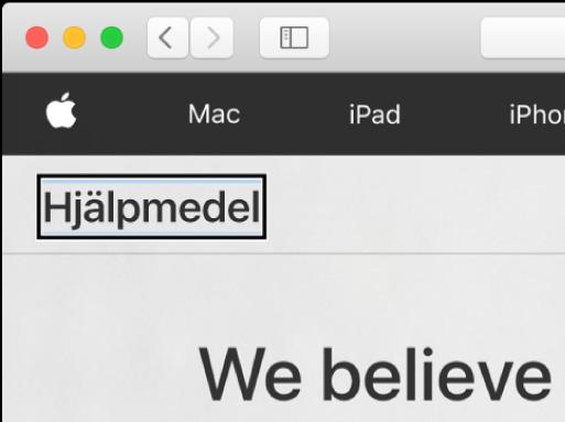 VoiceOver-pekaren – en mörk rektangulär ram – fokuserar på ordet Hjälpmedel på skärmen.