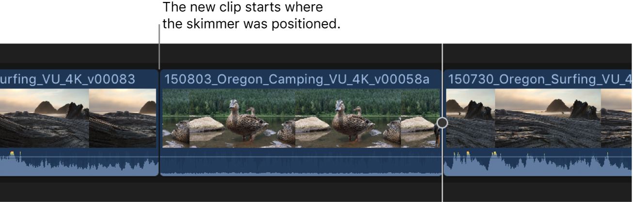 The browser clip shown added to the timeline starting at the skimmer position