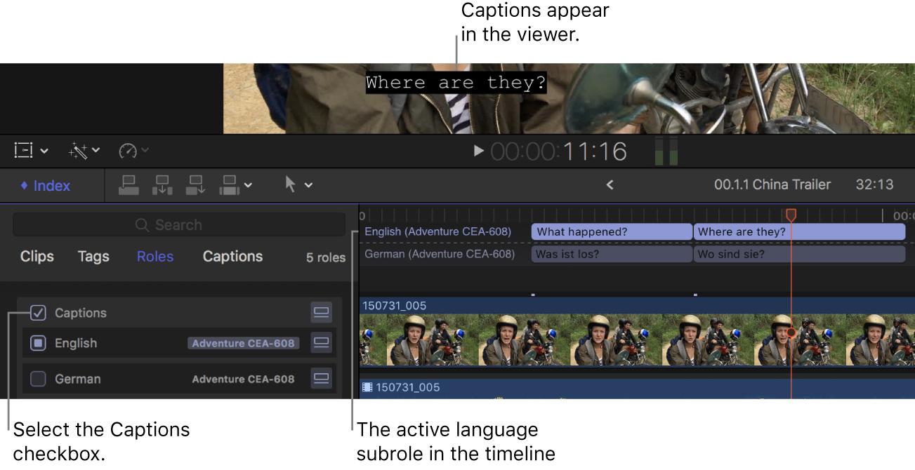 La casilla Subtítulos seleccionada en el índice de la línea de tiempo, y un subtítulo de la subfunción del idioma activo mostrado en el visor