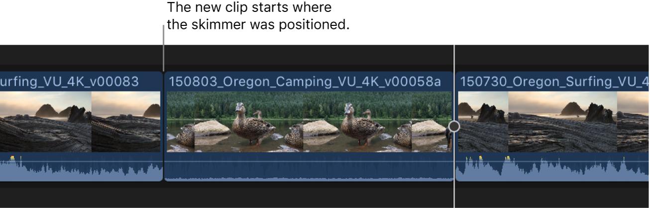 El clip del explorador añadido a la línea de tiempo a partir de la ubicación de Skimmer