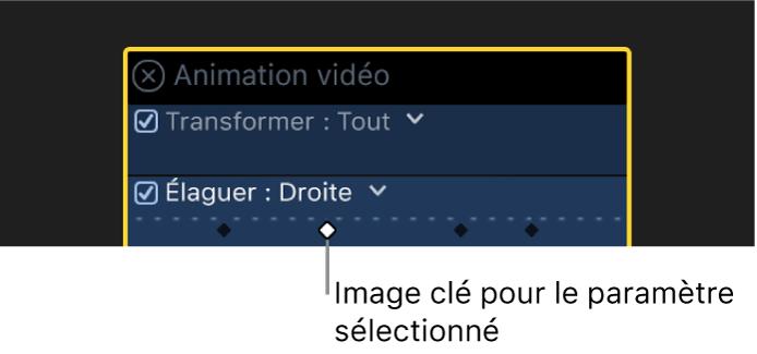 Éditeur d'animation vidéo avec des images clés actives et inactives