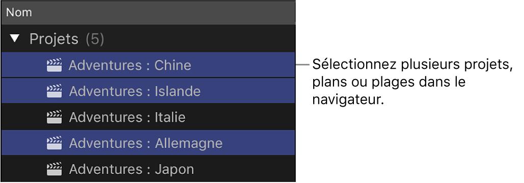Plusieurs plans sélectionnés dans le navigateur