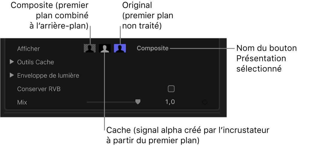Commandes de présentation dans l'inspecteur vidéo