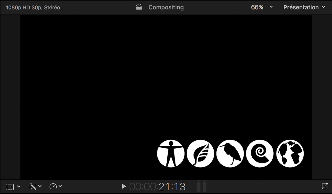 Visualiseur affichant l'image de cache du canal alpha