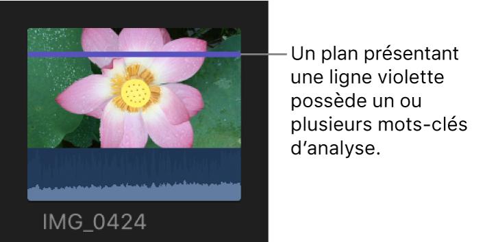 Plan présentant un trait violet indiquant qu'un ou plusieurs mots-clés d'analyse ont été appliqués