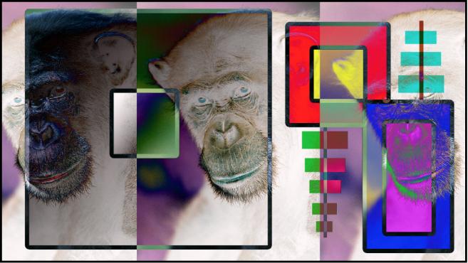 """Canvas mit Kombination aus Farbfeldern und dem Affen unter Verwendung der Füllmethode """"Differenz"""""""