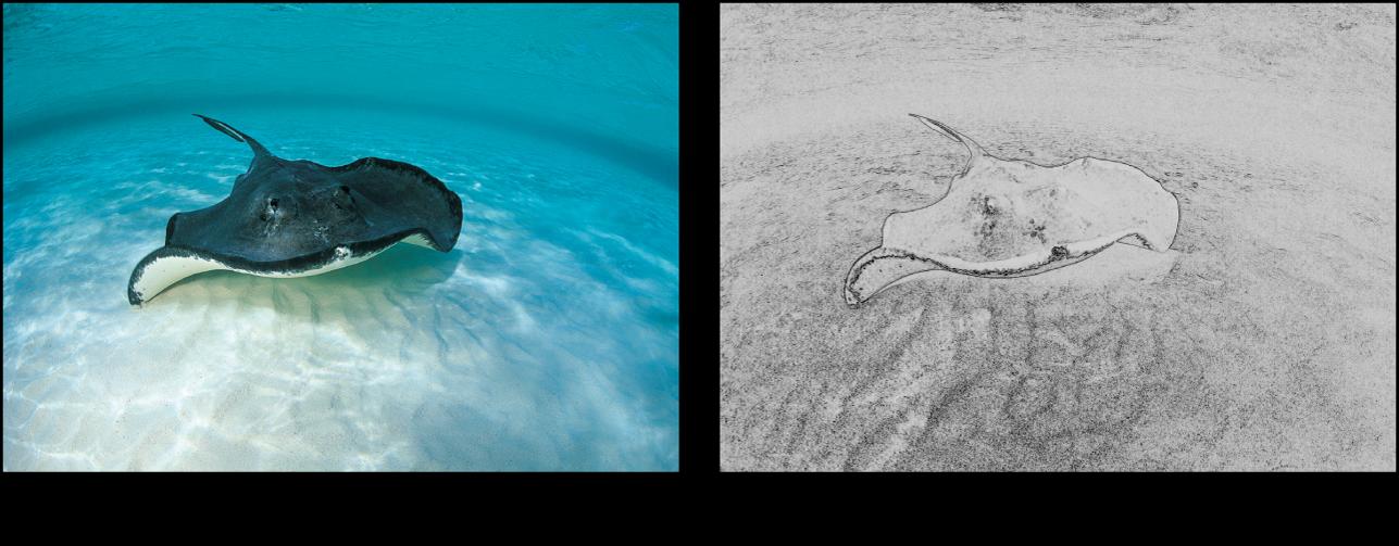 """Canvas mit dem Effekt des Filters """"Strichzeichnung"""""""