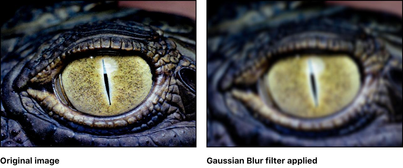 """Canvas, der den Effekt des Filters """"Gauß'sches Weichzeichnen"""" zeigt"""