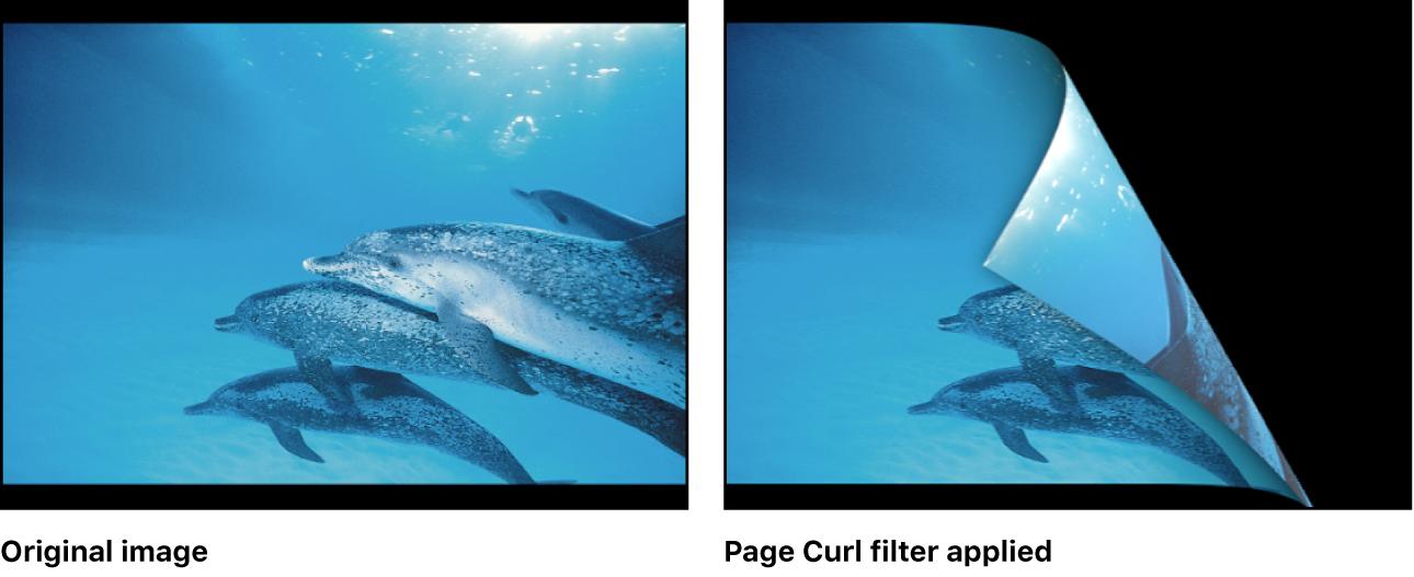 """Canvas mit dem Effekt des Filters """"Umblättern"""""""