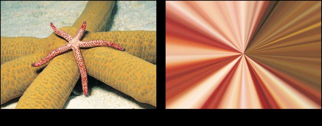"""Canvas mit dem Effekt des Filters """"Sternenexplosion"""""""