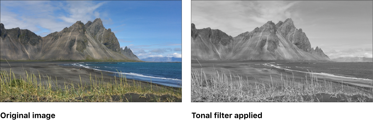 Canvas showing effect of Tonal filter
