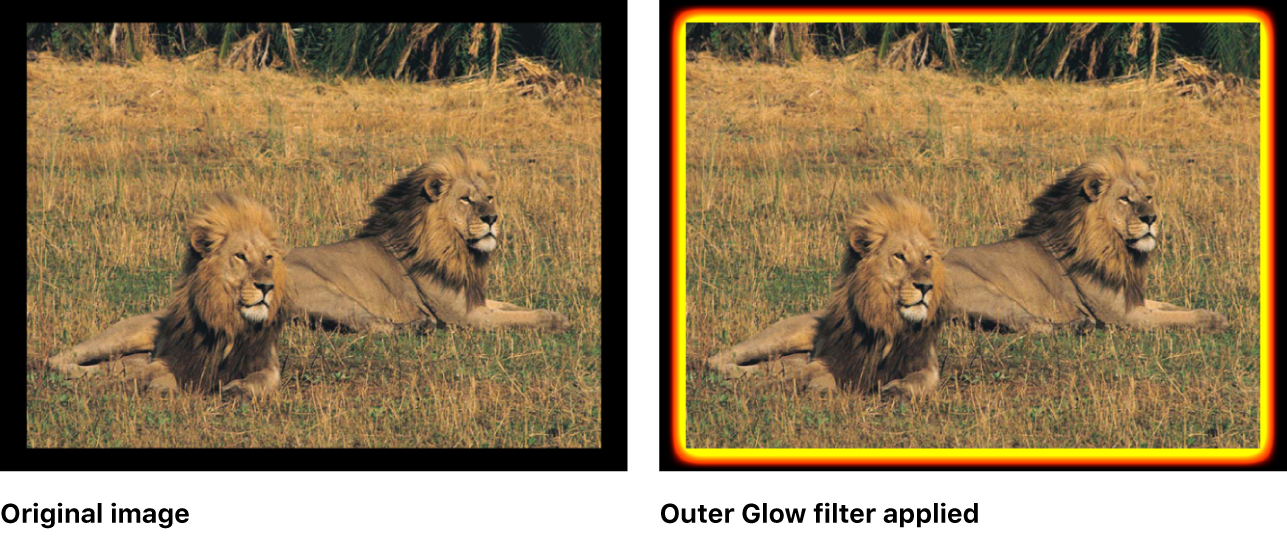 Canvas showing effect of Outer Glow filter