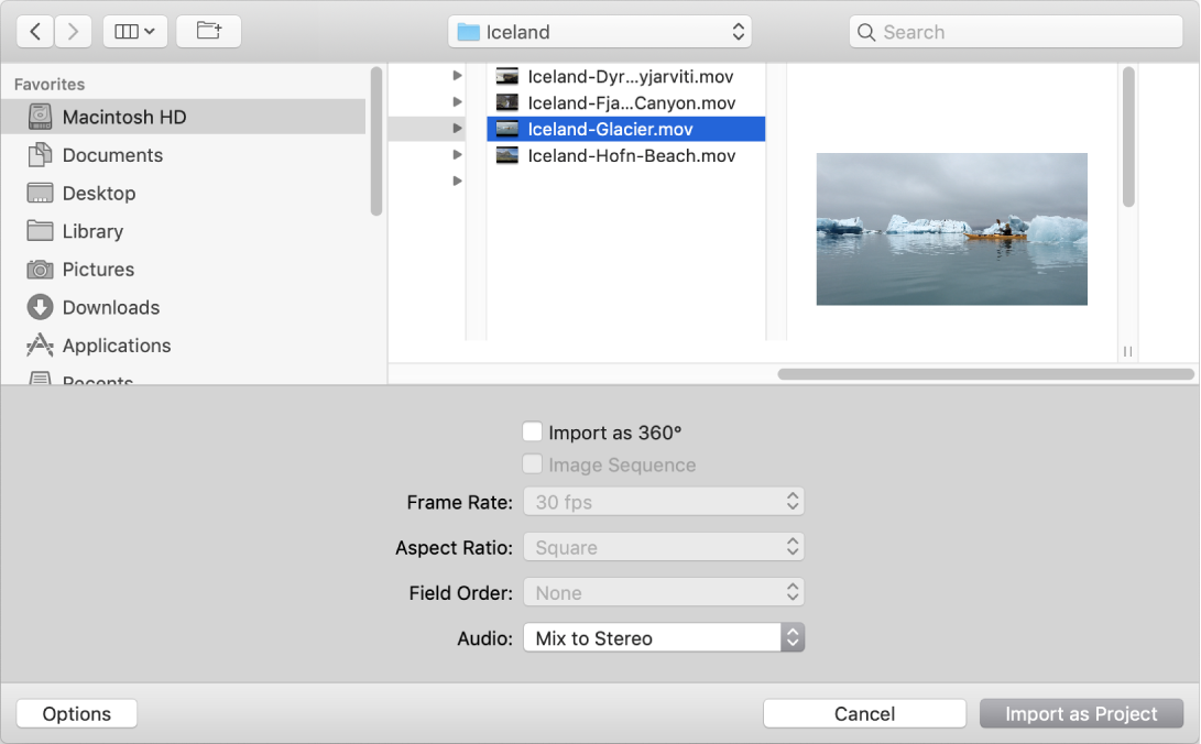 Import as Project dialog