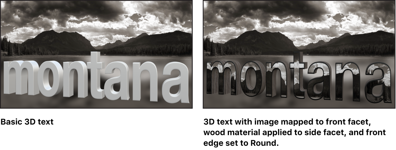 Canvas showing basic 3D text and 3D text with custom image mapped to front facet, wood applied to side facet, and front edge set to Round