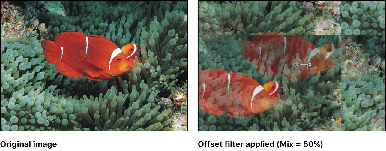 Canvas showing effect of Offset filter