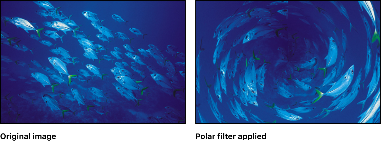 Canvas showing effect of Polar filter