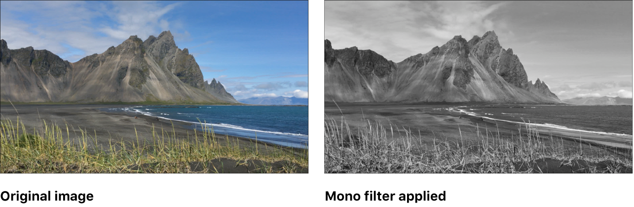 Canvas showing effect of Mono filter