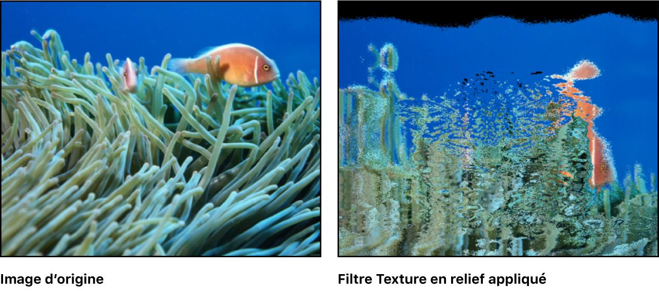 Canevas affichant l'effet du filtre Texture en relief
