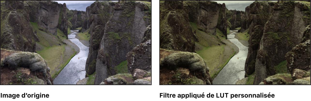 Canevas affichant l'effet d'une LUT appliquée par le filtre LUT personnalisée