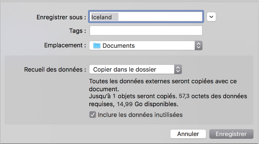 Zone de dialogue d'enregistrement affichant les options du menu local Recueil des données