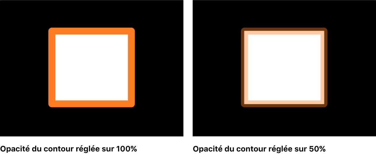 Canevas affichant un objet dont le remplissage et le contour présentent des opacités différentes