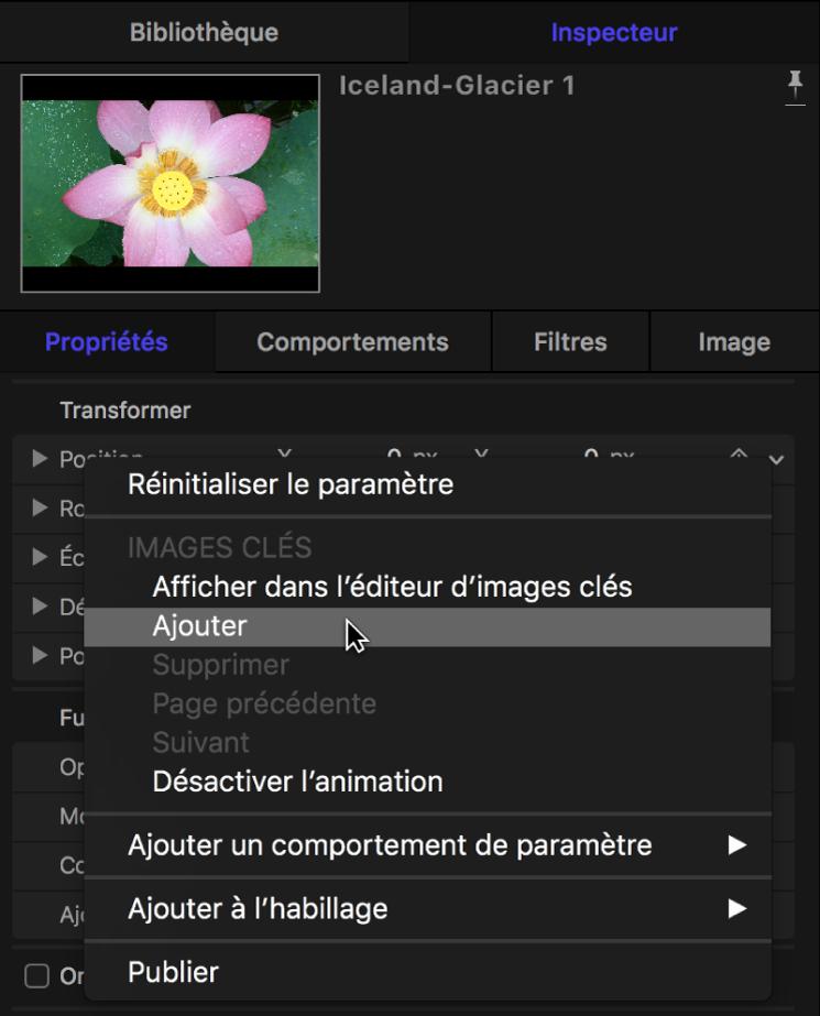 Inspecteur affichant le menu Animation d'un paramètre d'image