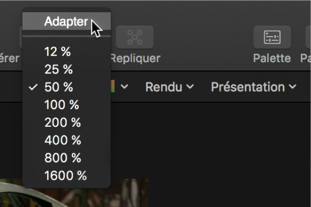 Sélection de l'option Adapter dans le menu local Niveau de zoom du canevas