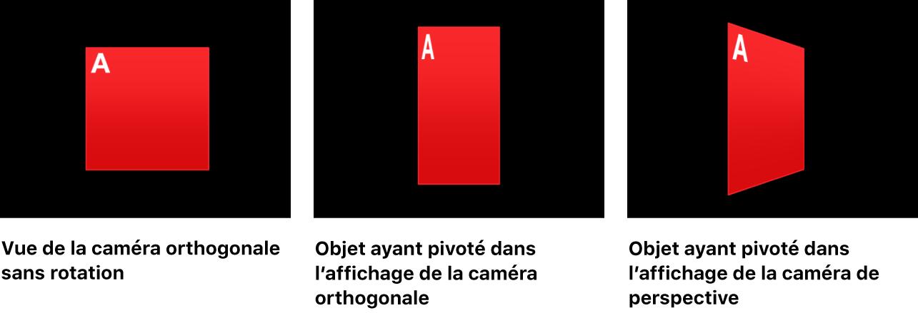 Canevas affichant un objet sans rotation et avec rotation dans une présentation de caméra orthogonale et dans une présentation de caméra en perspective