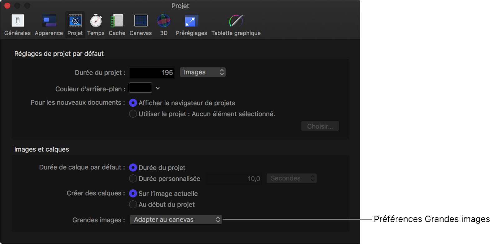 Fenêtre Préférences affichant une fenêtre de projet avec le menu local Grandes images réglé sur Adapter au canevas