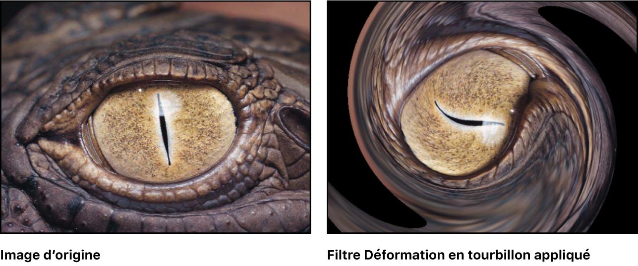 Canevas affichant l'effet du filtre Déformation en tourbillon