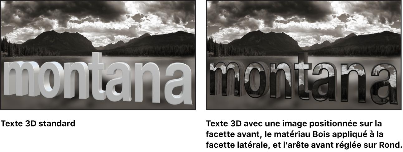 Canevas affichant un texte3D de base et un texte3D avec une image personnalisée positionnée sur la facette avant, la substance Bois appliquée à la facette latérale et l'arête avant réglée sur Rond
