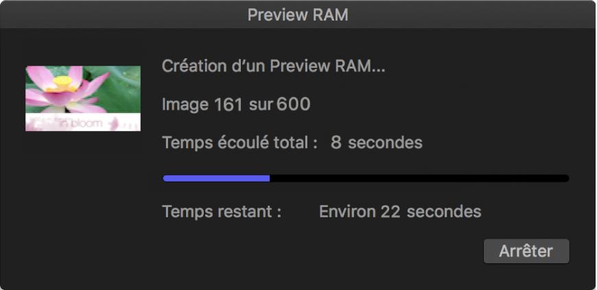 Zone de dialogue de progression de preview RAM