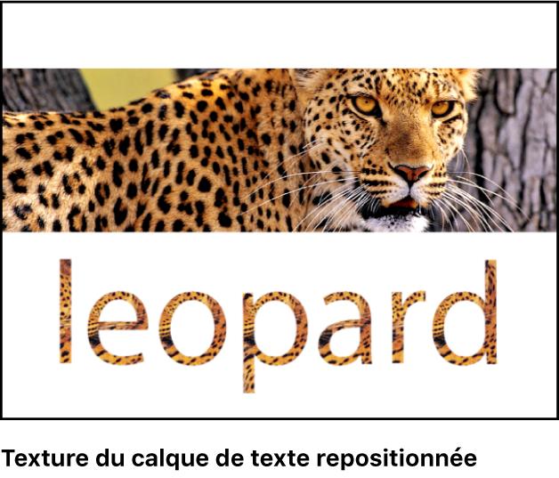Canevas affichant du texte dans lequel la texture est repositionnée