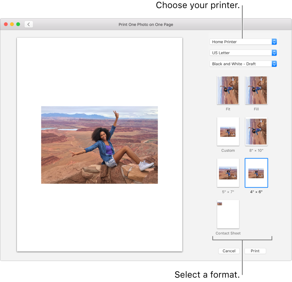 A window for selecting print options, with a print preview area on the left and print options on the right.