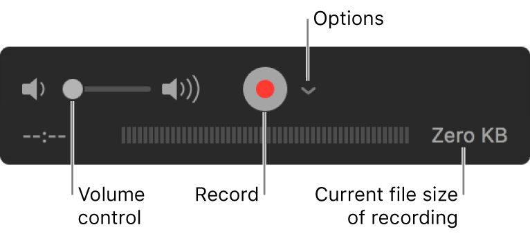 The recording controls, including the volume control, the Record button,and the Options pop-up menu.