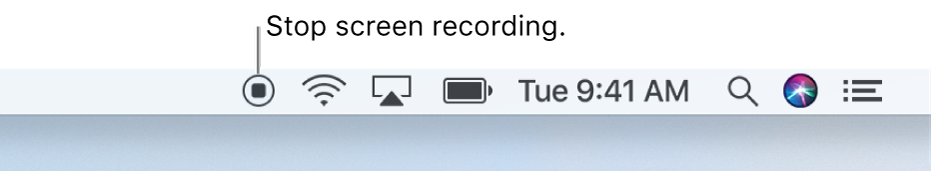 The Stop button in the menu bar.