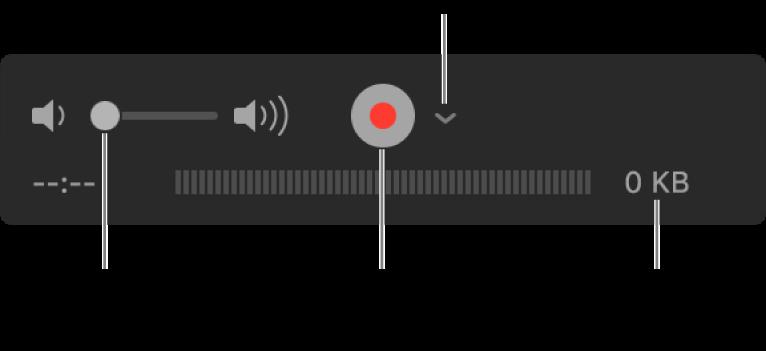 Los controles de grabación, incluido el control de volumen, el botón Grabar y el menú desplegable Opciones.