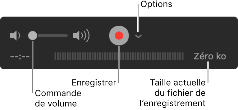 Les commandes d'enregistrement, notamment le contrôle du volume et le bouton Enregistrer, et le menu local Options.