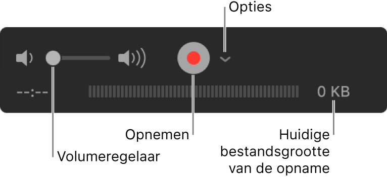 De opnameregelaars, met de volumeregelaar, de opnameknop en het venstermenu 'Opties'.