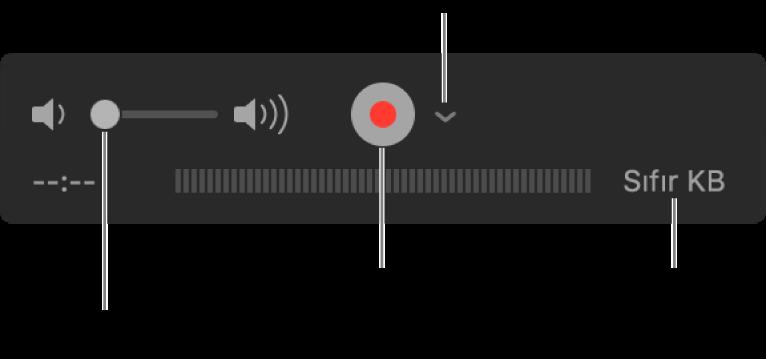 Ses yüksekliği denetimi, Kayıt Yap düğmesi ve Seçenekler açılır menüsünü içeren kayıt denetimleri.