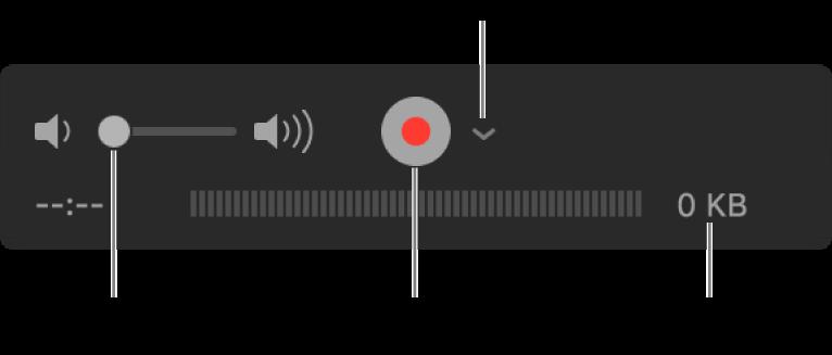"""包含音量控制、""""录制""""按钮和""""选项""""弹出式菜单的录制控制。"""
