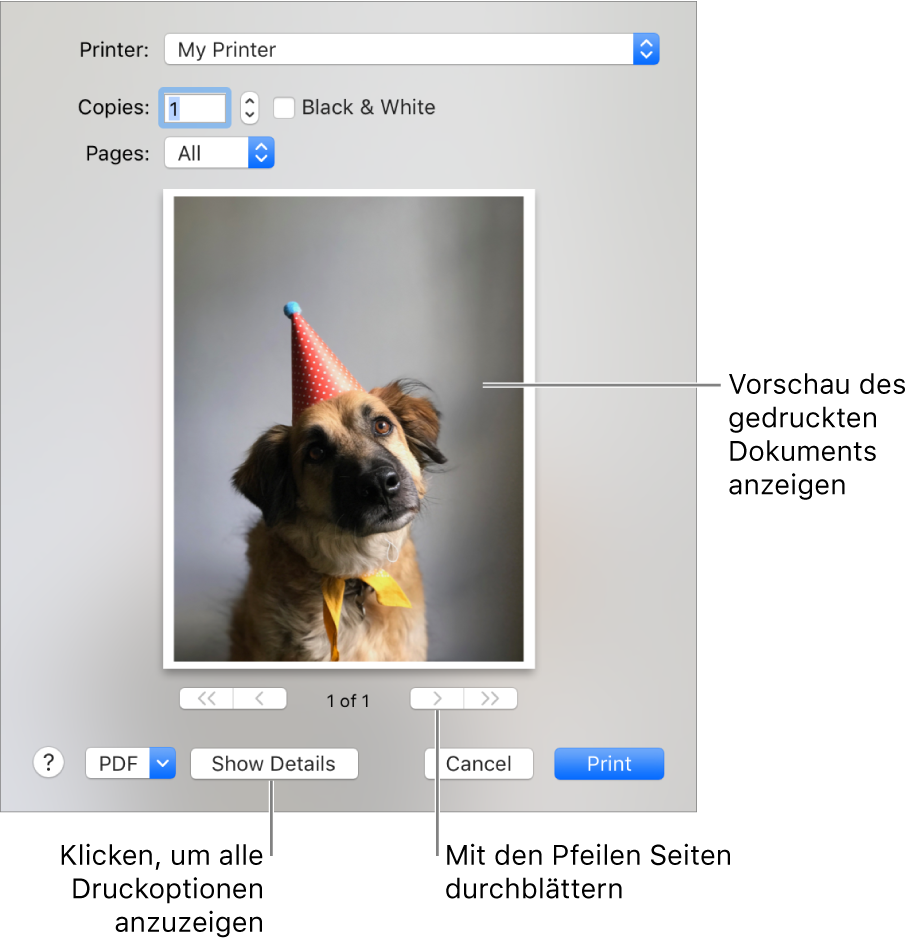 """Im Einblendmenü """"Drucken"""" wird der Status eines Druckers durch Symbole veranschaulicht. Das Dialogfenster """"Drucken"""" enthält eine kleine Vorschau deines Druckauftrags. Klicke auf """"Details einblenden"""", um alle Druckoptionen zu sehen."""