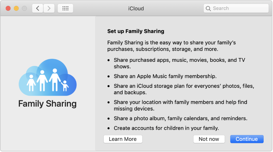 The Family Sharing set up pane in iCloud preferences.