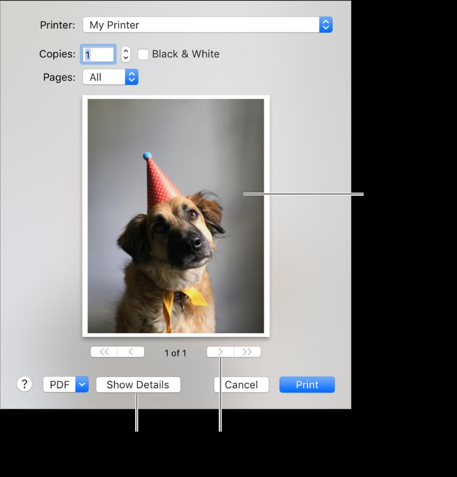 Os ícones no menu local Impressora indicam o estado da impressora. O diálogo de Impressão exibe uma pequena pré-visualização do trabalho de impressão. Clique no botão Mostrar Detalhes para ver todas as opções de impressão.
