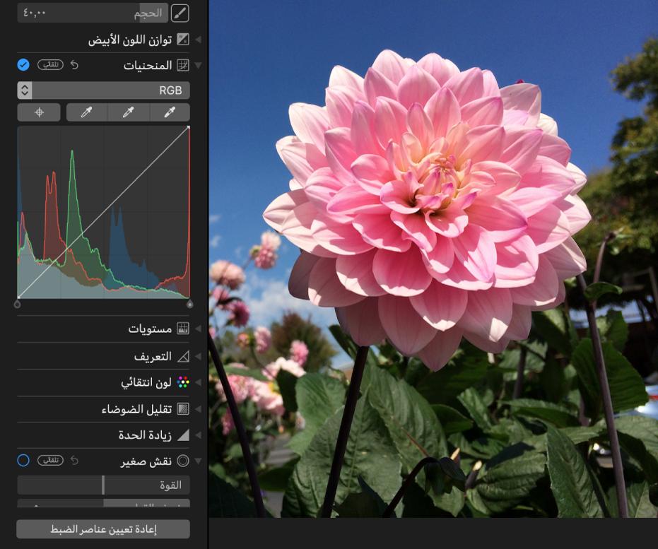 صورة قبل تعديلات المنحنيات.