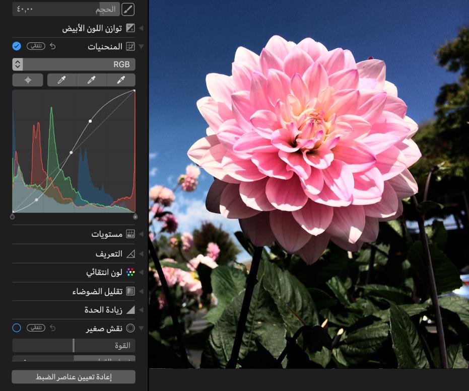 صورة بعد تعديلات المنحنيات.