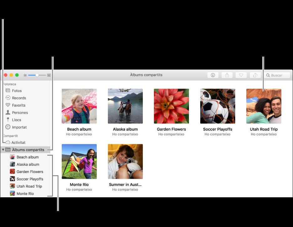 """El tauler """"Àlbums compartits"""" de la finestra de l'app Fotos, que mostra àlbums compartits."""